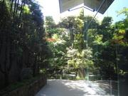建築見学 ~東京2 美術館対決~